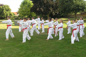Juniors Karate Training on Grass